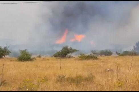 Incendio di bosco