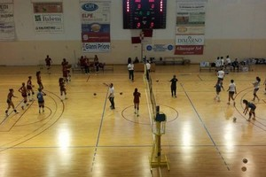 Leonessa Volley Altamura - Nelly Volley