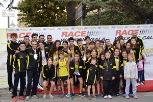 Race Walking Gala 2013