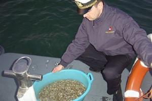 sequestro frutti di mare