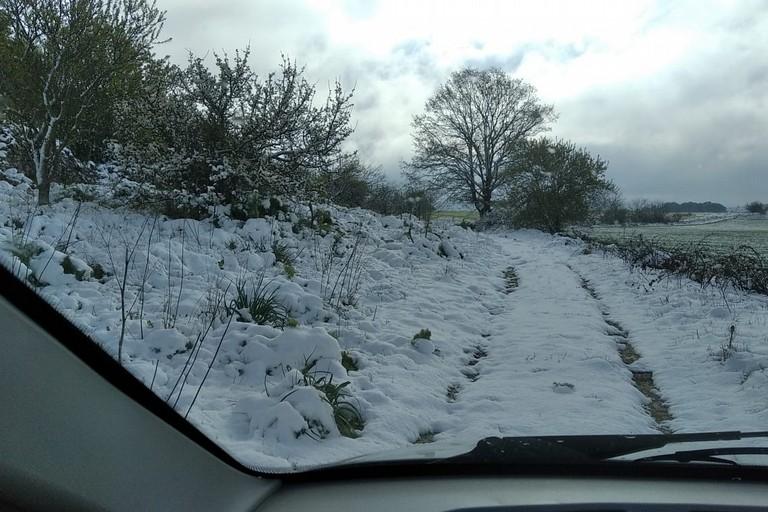 Neve sulla Murgia