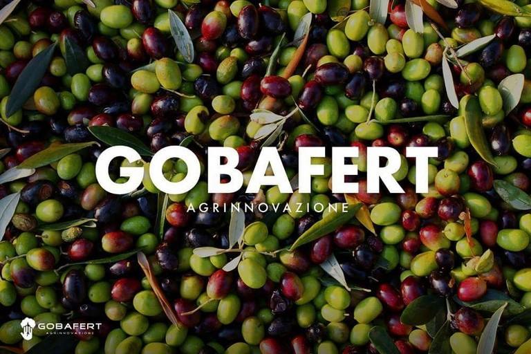 Gobafert