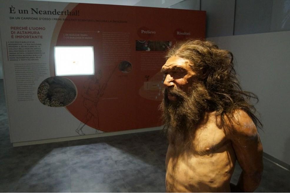 museo altamura