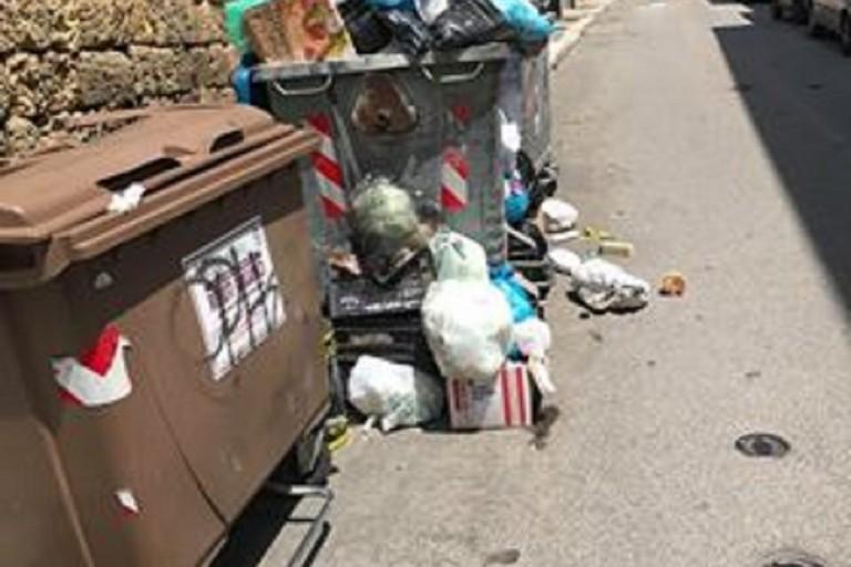 spazzatura per strada