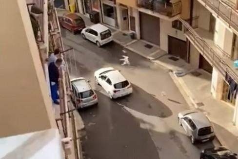 Fuga di ladri